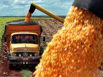 Destinan $ 5000 millones para productores en situación de emergencia agropecuaria