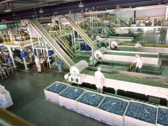 Producción de las pymes industriales se contrajo un 6% durante octubre